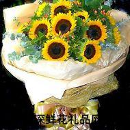 向日葵,心中的太阳