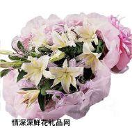 祝福鲜花,珍爱