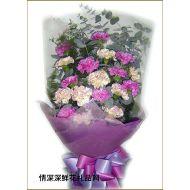 亲情鲜花,执著的愛
