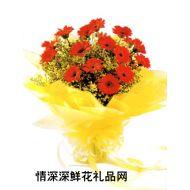 亲情鲜花,生气勃发绽新机