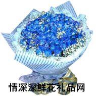 蓝色妖姬,为我所爱