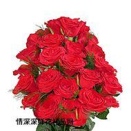 美国,24枝红玫瑰