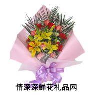 太阳菊,喜悦