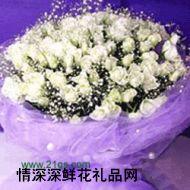 广州鲜花,白雪公主