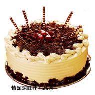 巧克力蛋糕,欢乐广场