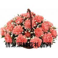 父亲节鲜花,无尽的祝福