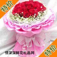玫瑰花,只爱你