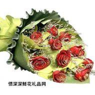 亲情鲜花,爱的春天
