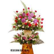 香港鲜花,吉祥如意
