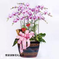 中秋节鲜花,鱼跃龙门