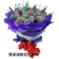 爱情鲜花,紫色梦境