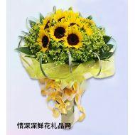 向日葵,珍惜友�x