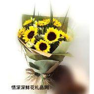 沈阳鲜花,光辉岁月