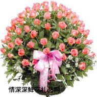 99/999玫瑰,久久玫瑰情
