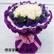 爱情鲜花,绮梦人生