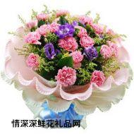 母亲节鲜花,一生守侯 母亲节