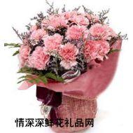 康乃馨,妈妈,我爱您!
