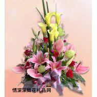 友情鲜花,美好祝福