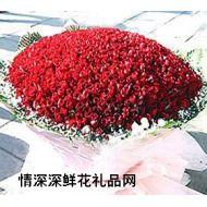 求婚鲜花,爱到永久(999枝)