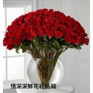 美国,99枝红玫瑰