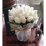 爱情鲜花,圣洁