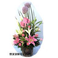 元旦鲜花,宾客满堂