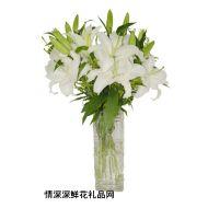 七夕节鲜花,冰洁之恋