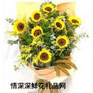 亲情鲜花,期盼