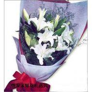 百合花,浪漫传说