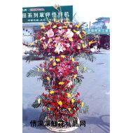 国庆节鲜花,百叶兴隆