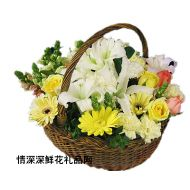 北京鲜花,您是我最深爱的人