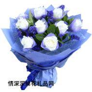 爱情鲜花,白玫瑰-爱如潮水