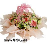 友情鲜花,温馨情怀