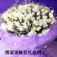 重庆鲜花,白雪公主