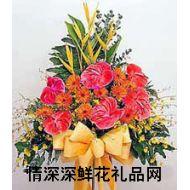 会议鲜花,祝你生意兴隆