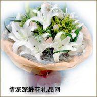 北京鲜花,清柔佳人